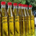 Vegetable oil filtration